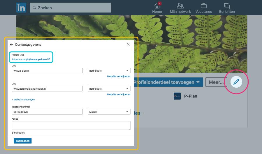 Screenshot van Liona's LinkedIn pagina, waar ze laat zien waar je de contactgegevens en je profiel URL kunt aanpassen